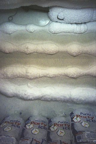 WE51 UNTITLED (FREEZER WITH ICE BAGS, KENTUCKY) 2000