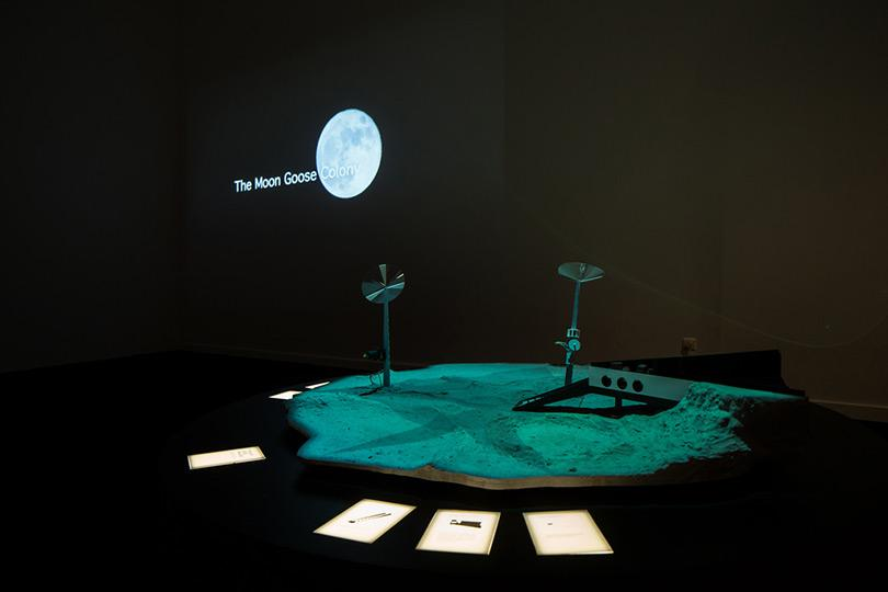 Agnes Meyer Brandis  Moon Goose Analogue, Lunar Migration Bird Facility 3