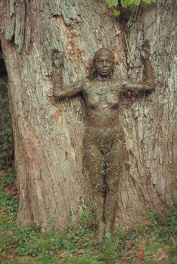 ANA MENDIETA Tree of Life