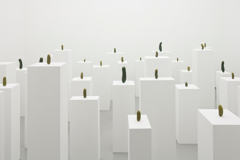 Erwin Wurm, Instalacja z ogorkami, 2008