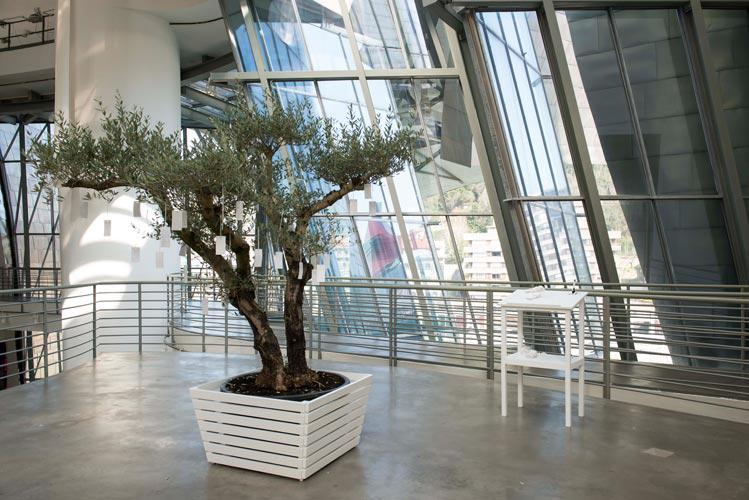 Yoko Ono, Wishing Tree, 2014, installation view ©GuggenheimBilbao