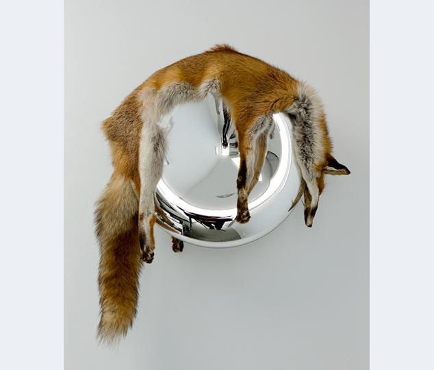 Roosen, Mirror Mirror, 2009, glas, vossenhuid, 60x 56 x 30 cm