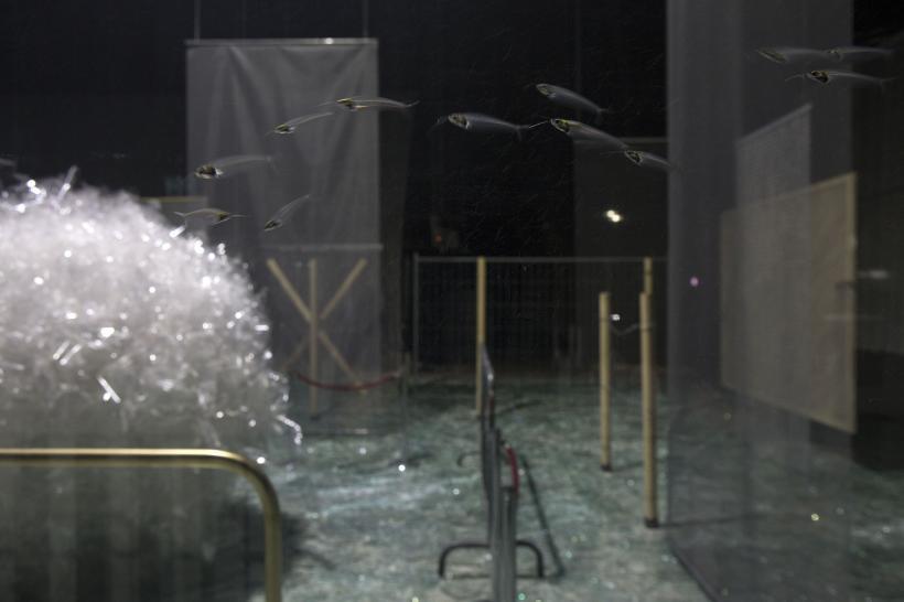Através, Installation view at Fondazione HangarBicocca, 2014