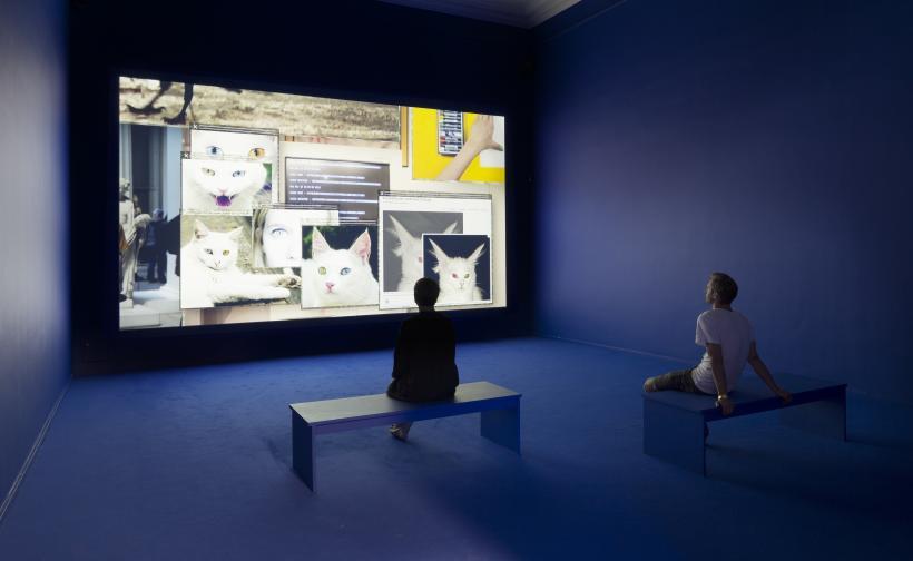 The Pale Fox (Installation shot, Kunsthal Charlottenborg) 2014