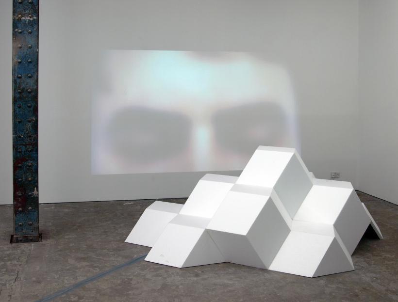 Steven Dickie: A Hypertrophied Eye, 2014