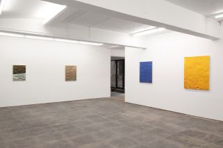Sachin Kaeley, installation view, 2014