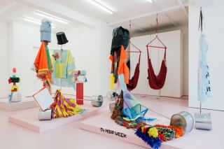 Oreet Ashery, 'Animal with a Language', installation view at Waterside Contemporary.