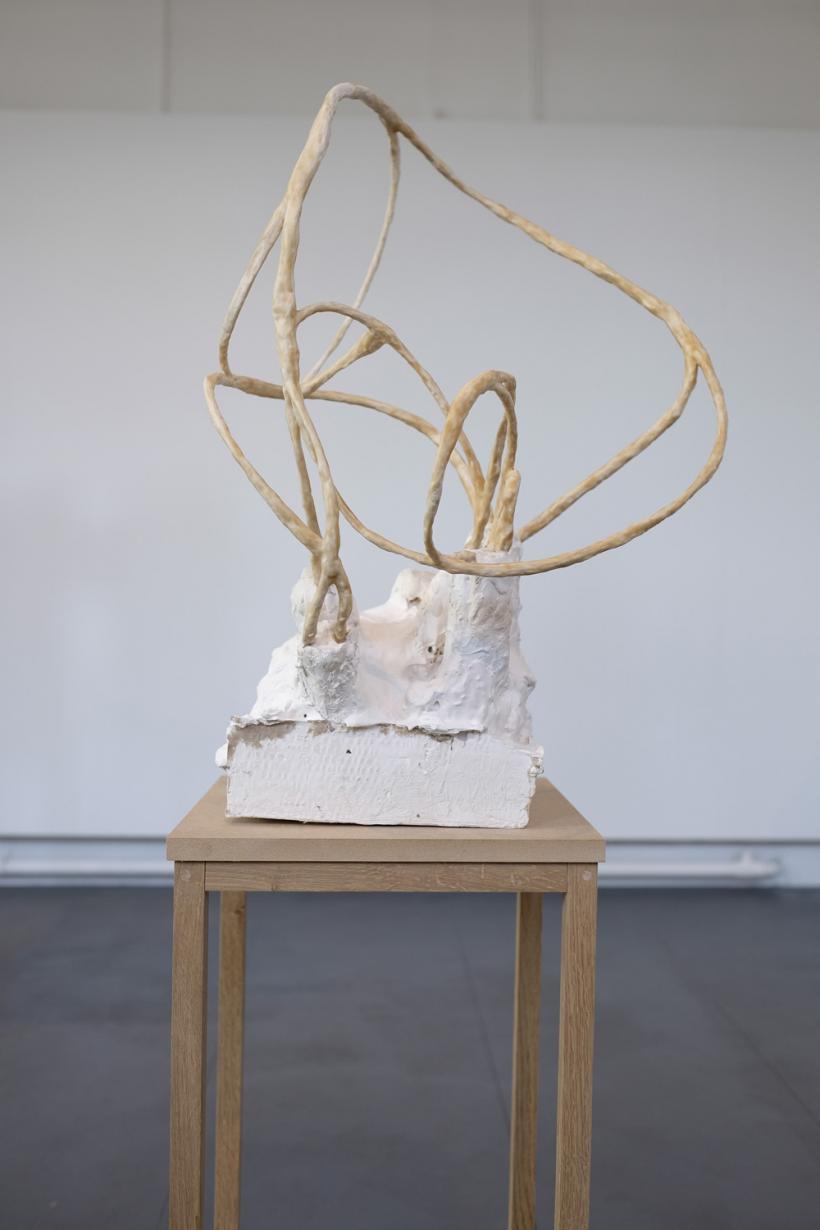 Emma Donaldson, drawing (2014)