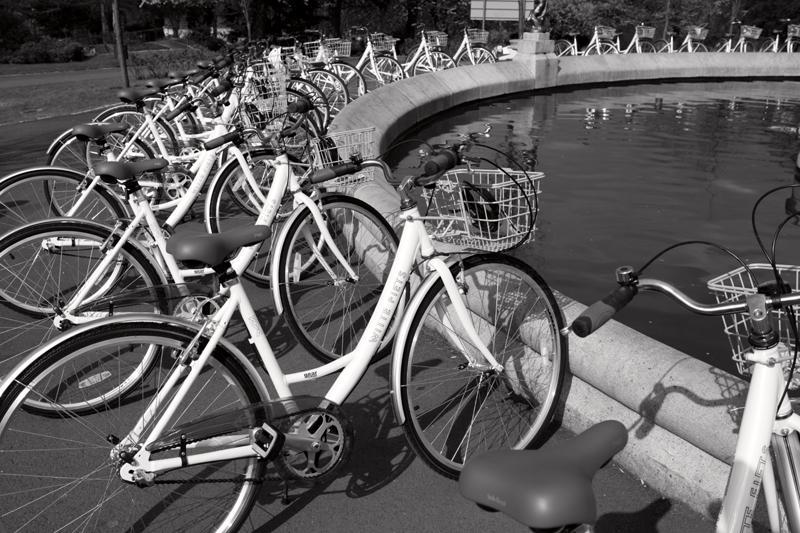 1 White Bike Plan 2010