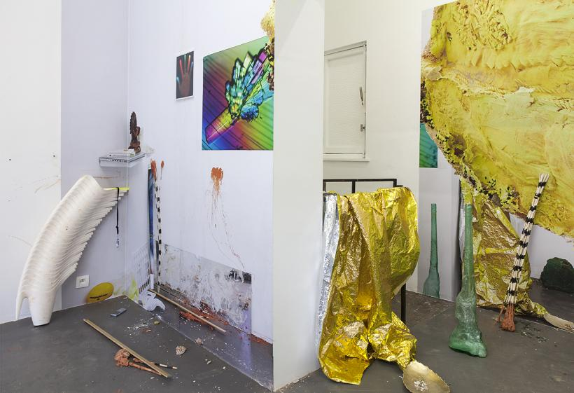 Installation view: « Don't cheat me out of the fullness of my capacity ! (2014)