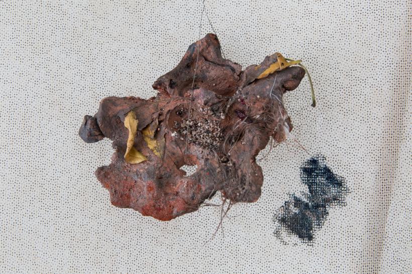 Detail of Crab Bekleidung
