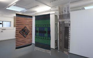 fig-2: Laura Eldret, installation view
