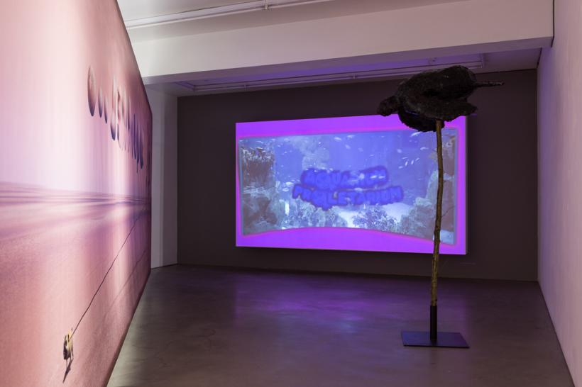 John Russell, 'Aquarium Proletarium' (2014), installation view at MOT International, London