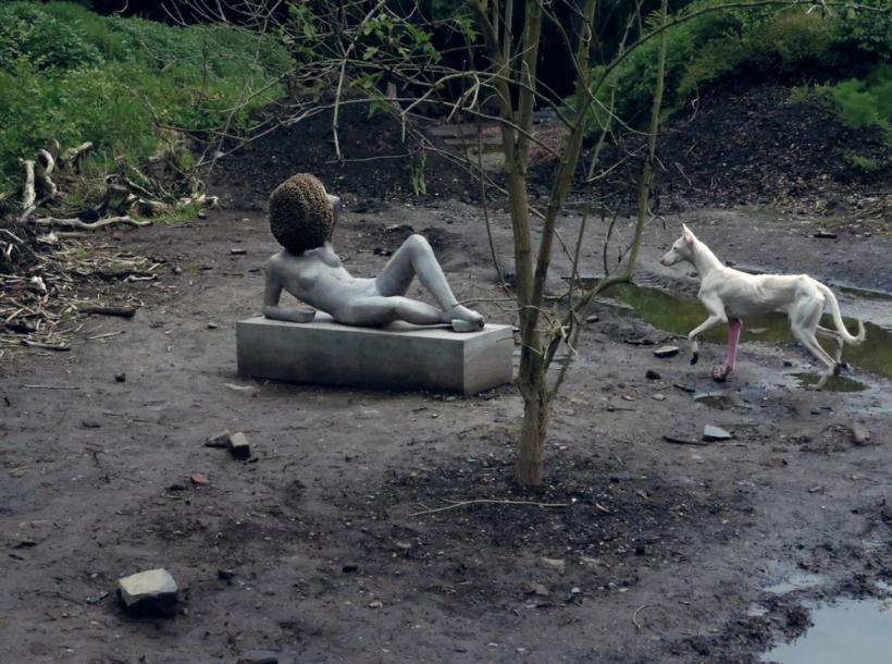 Pierre Huyghe, Untilled, 2011-12