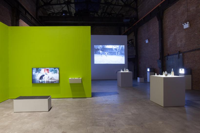 Araya Rasdjarmrearnsook, Installation view at SculptureCenter, 2015