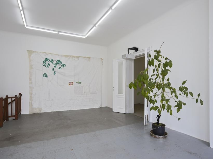 Come Inside, Bitte, Installation View