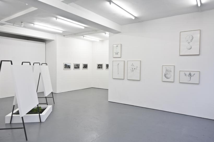 Installation view, Limits of Responsibility