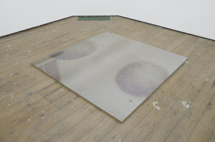 Installation view from Occasional Table #4: Patricia L Boyd Under Glass, February 13th - February 21st