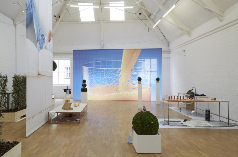 Deborah Delmar Corp.: Upward Mobility Upper Gallery, Modern Art Oxford 2015