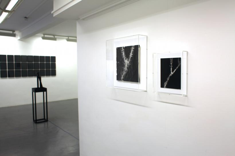 Getting Better and Worse at the Same Time, installation photograph