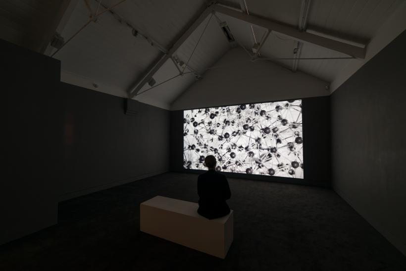 Georgie Grace, the machine is almost pure magic, Jerwood Encounters: 3-Phase, 2015. Installation view, Jerwood Space, London