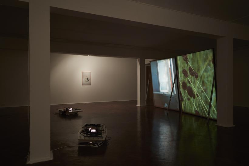 Eternal Soup, Sudden Clarity, Installation View at SPACE