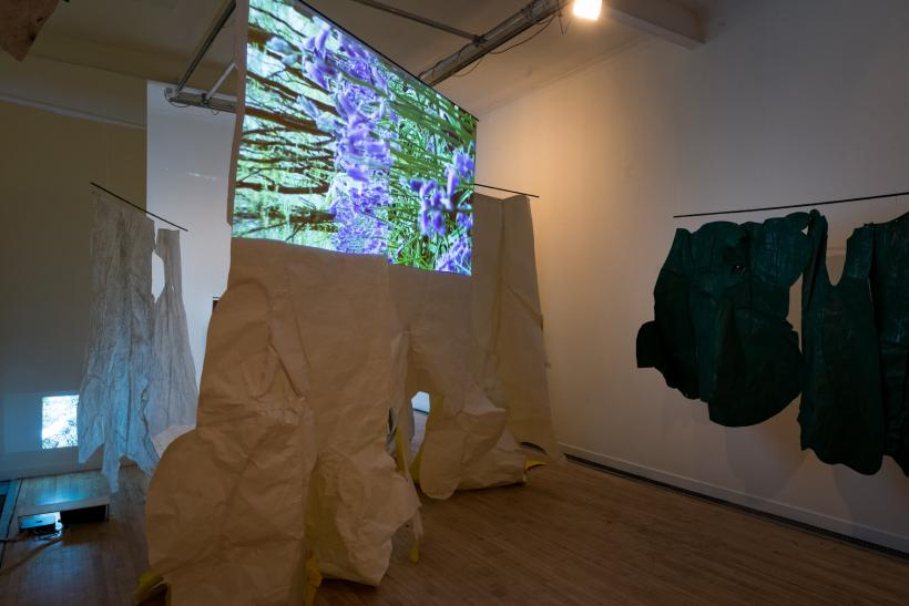 Fiona Macdonald, Woodland Portrait Project, installation view, Peacock Visual Arts, 2015