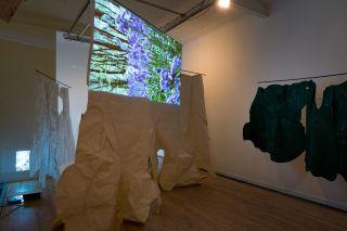 Fiona Macdonald, Woodland Portrait Project, installation view, Peacock Visual Arts, 2015