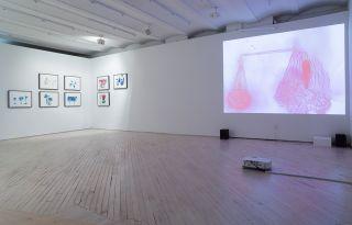Christine Rebet, Paysage Fautif, Installation View at Bureau, 2015