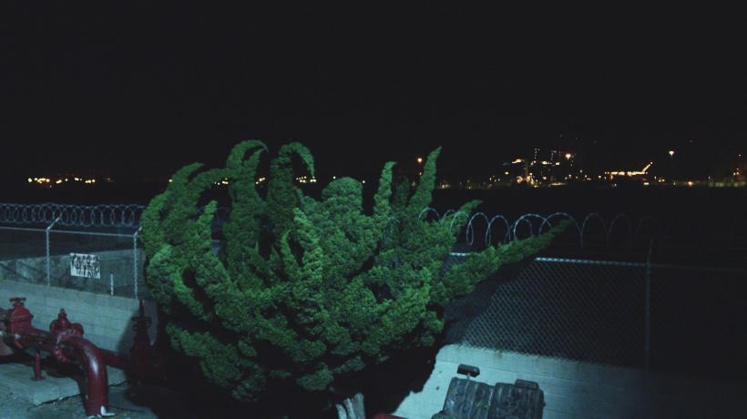 Nightlife, (Film still)