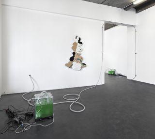 Kai ❤ D̶a̶l̶s̶t̶o̶n̶  Bushwick, Installation View