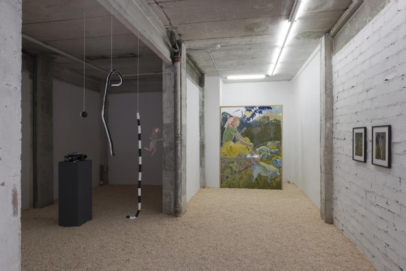 AXOLOTLISM, Installation View
