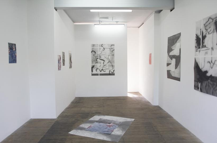 These Sticks, Installation View