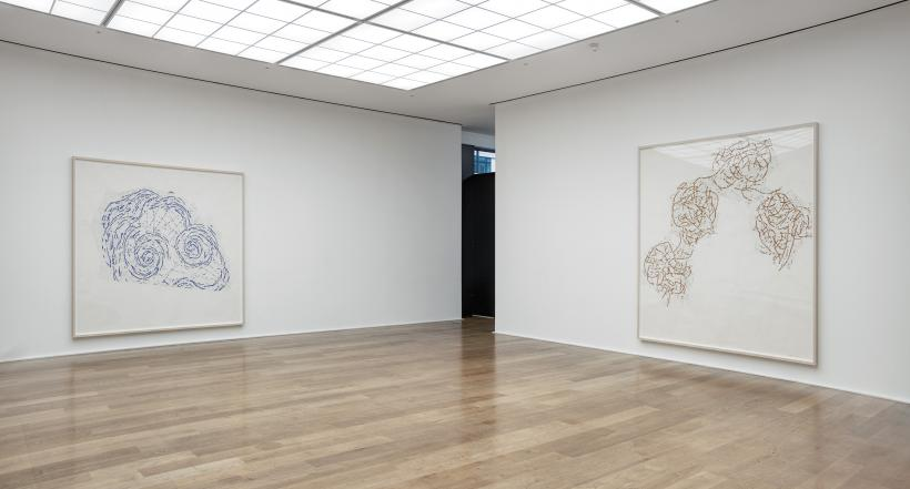 Installation view, Roni Horn, Butterfly Doubt, South Gallery, Hauser & Wirth London, 2015