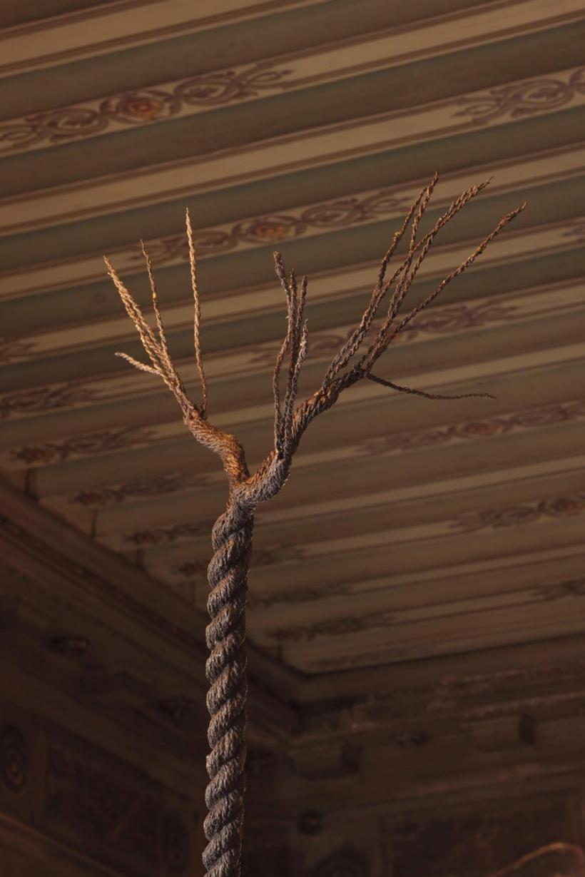 Installation view, Graham Fagen', 'Rope Tree', 2015