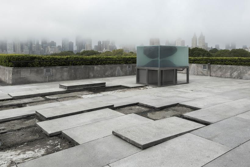 Installation view of The Roof Garden Commission: Pierre Huyghe at The Metropolitan Museum of Art, 2015
