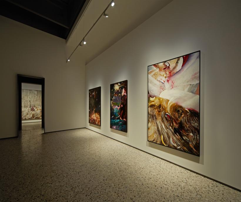 Adrian Ghenie, Darwin's Room, installation view, 2015
