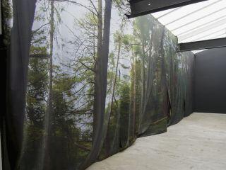 Installation View, Bedwyr Williams, Writ Stink, 2015, Limoncello, London