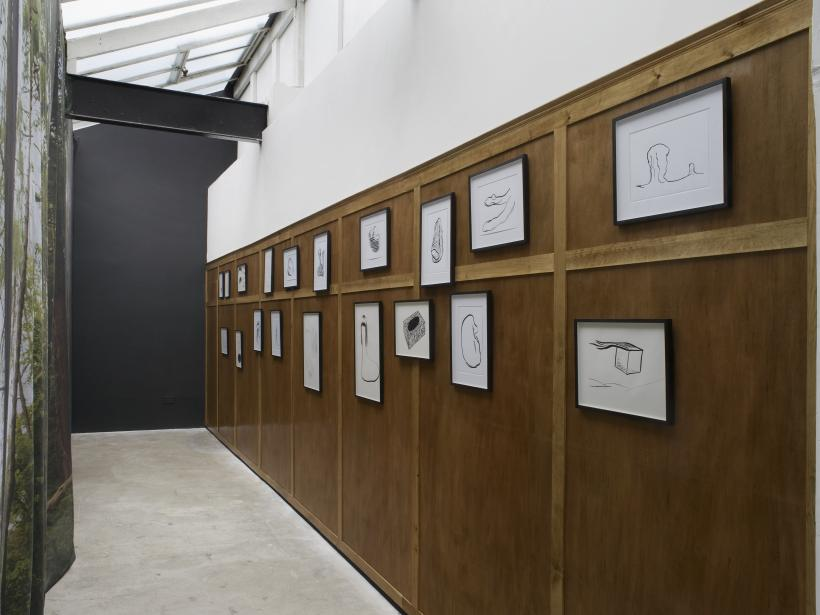 Installation View, Bedwyr Williams, Writ Stink, 2015, Limoncello, London