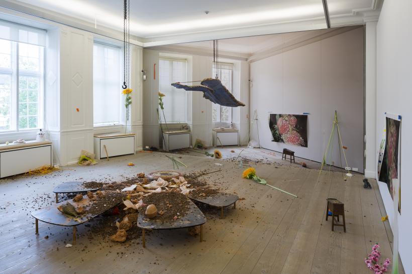 Emmanuelle Lainé, Le Plaisir dans La Confusion des Frontières sur Trust, 2015