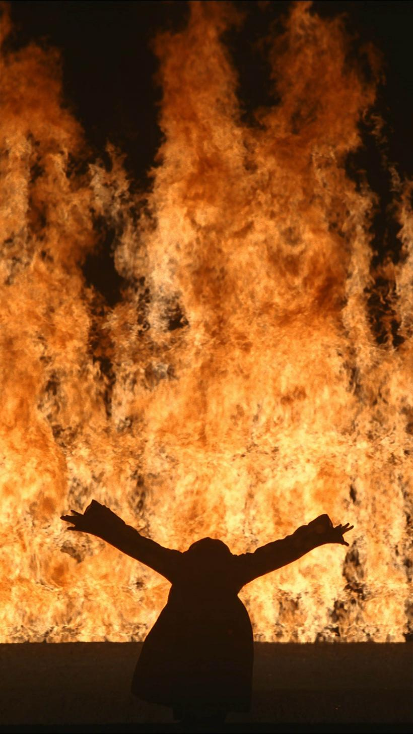 Bill Viola, Fire Woman, 2005