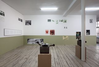 Codename: Osvaldo. Two Case Studies, Installation View