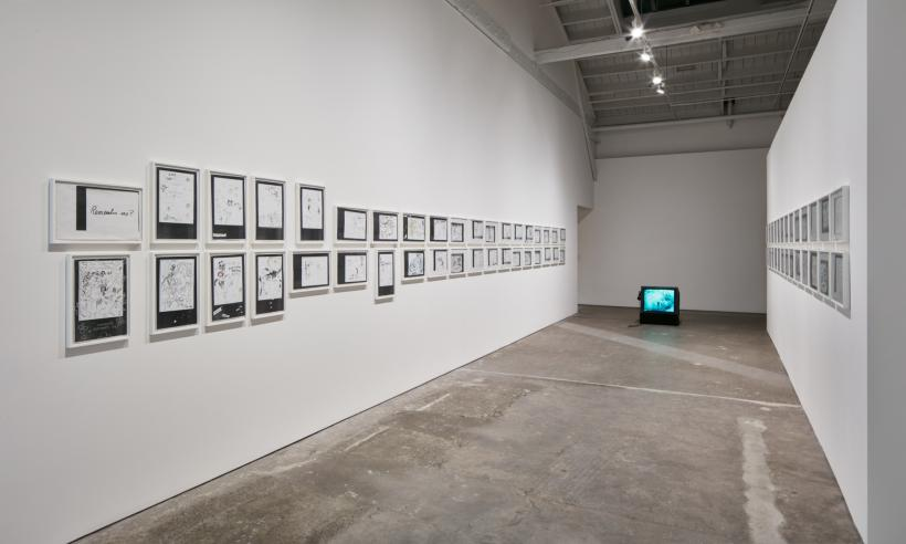 Cinderella Syndrome, Installation View