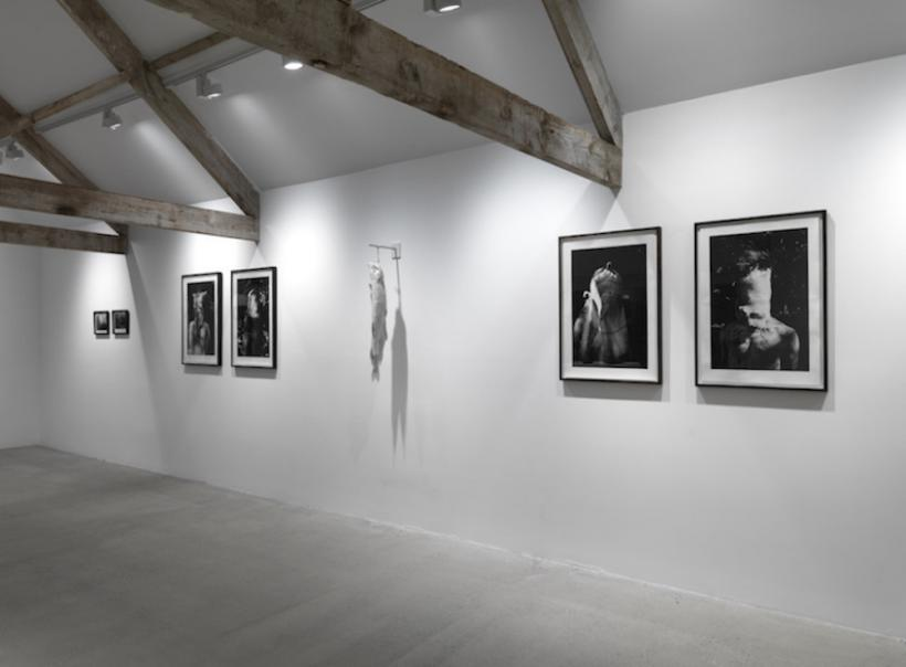 Installation view gallery 1