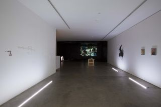 Installation view, Edel Assanti