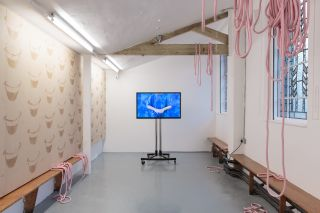 Installation view Zabludowicz Collection Invites: Jemma Egan, 2016.
