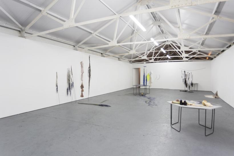 Lupercalia, Installation View