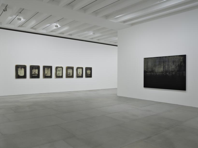 Michael Joo, Radiohalo, installation view, 2016