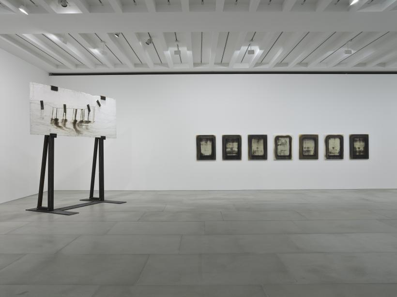 Michael Joo, Radiohalo installation view, 2016