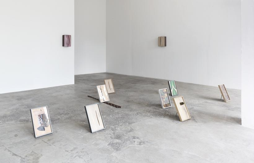Paradise, Installation View
